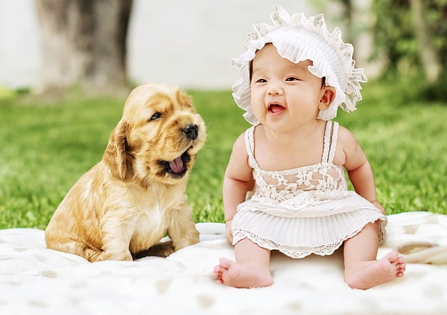 Well Pet - Prepare Your Dog For Newborn Baby