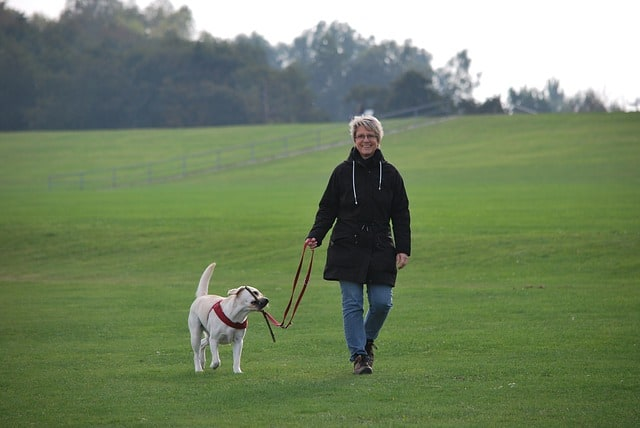 Lady wearing black walking with her white dog on a leash