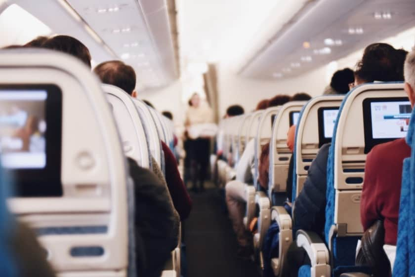 Can your pet fly with you in the airplane cabin
