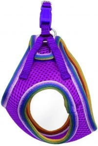 Coastal Pet Harness - Lil Pals Mesh Step-In