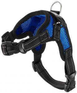 Copatchy Dog Harness