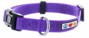 Pawtitas Reflective Dog Collar with Stitching Reflective Thread