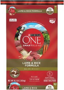 Purina ONE SmartBlend Dry Dog Food 4th best dog foods