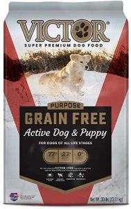 Victor For Active Dog & Puppy