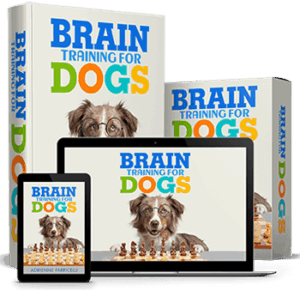 Training4Dogs Product Image