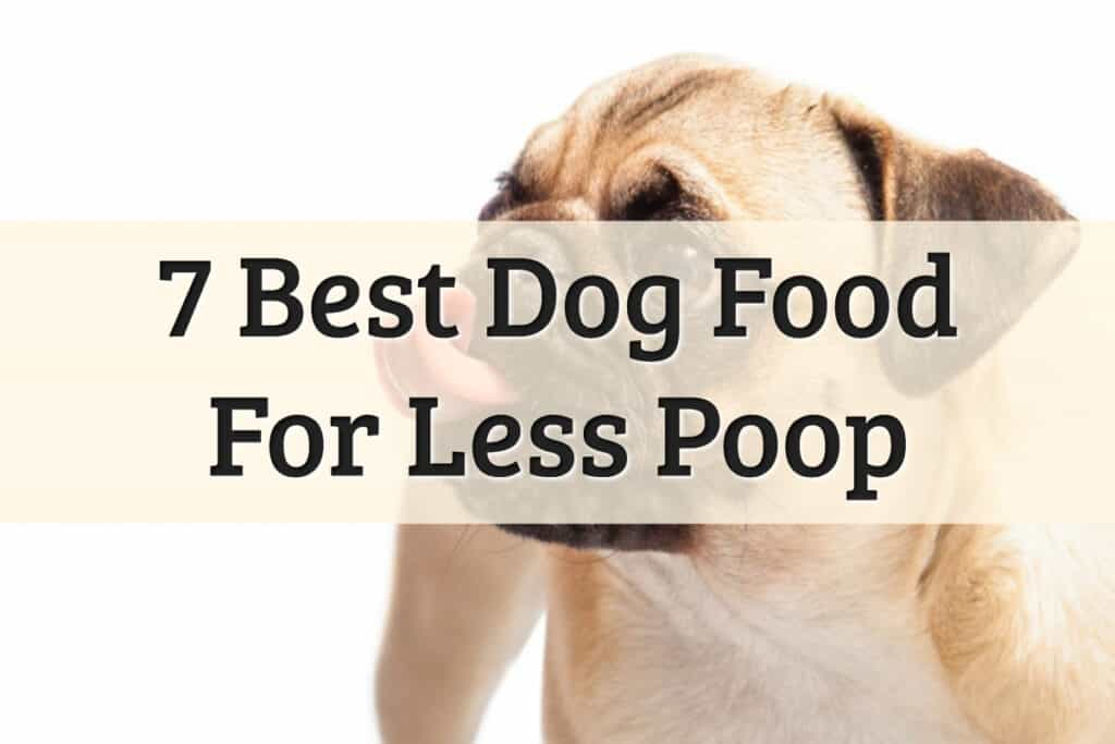 Best Food That Dog Needs To Eat To Produce Less Poop Reviews Feature Image