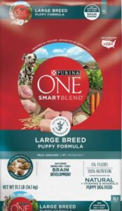 Purina ONE SmartBlend Chicken For Dogs Diet