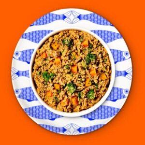 Chompin' Chicken Dry Dog Food Diet