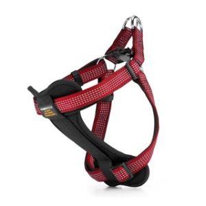 4 Paws Tech, StarLight Reflective Harness