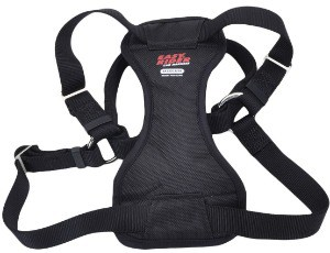 Coastal Easy Rider Adjustable Car Harness with size