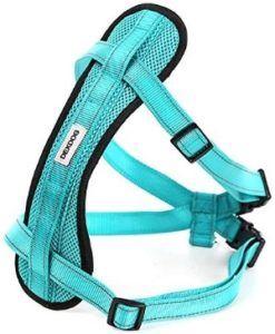 DEXDOG Chest Plate Harness Auto Car Safety Harness