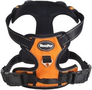 EXPAWLORER Reflective Outdoor Adventure Vest