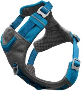 Kurgo Journey Harness with leash attachment points