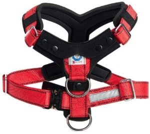 MIM AllSafe Comfort Safety Harness dog padded chest