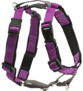 Petsafe 3-In-1 Harness with size