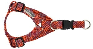Tall Tails Braided Harness Multi