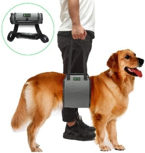 A Useful Harness Even for Breeds with Large Sizes