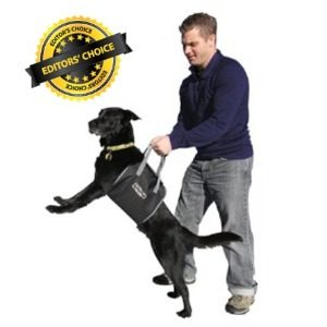 Help Your Dog Up and Down Stairs with this Harness