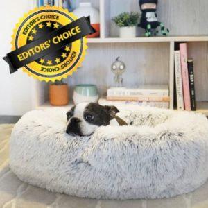 Pet Bed with Memory Foam and Cover