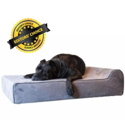 Orthopedic Dog Bed Reviews for X Large Dogs