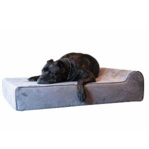 Best Machine Washed Pet Bed for Your Dog