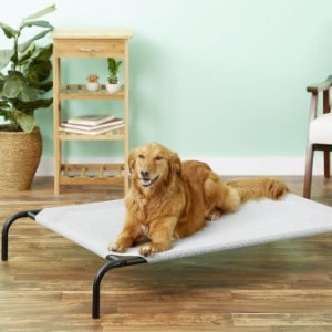 Easy Clean Bed for Your Dogs