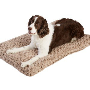More Orthopedic Dog Bed Options for Washing Machine