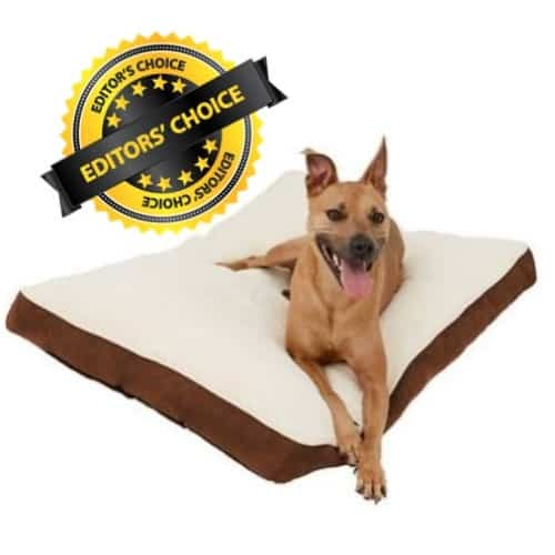 Washable Memory Foam Dog Bed