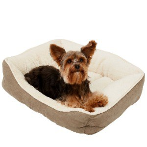 Comfortable Bed for Small Pooch and Pup