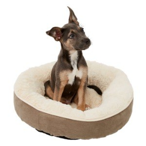 People Love Small Pink Dog Bed with Cover