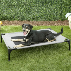 A Good Bed for Your Dogs