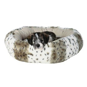 Pup Bed with Non Slip Foam and Cover