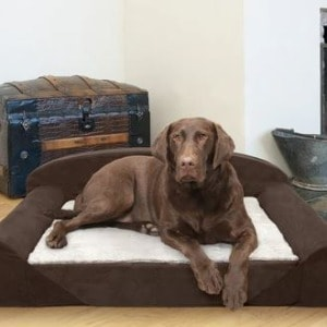 Dog's Bed with Support Foam and Velour Cover