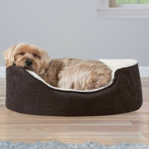 X Large Gel Foam Doggy Beds with Cover