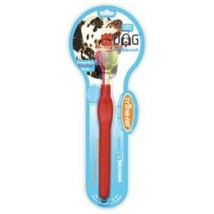 Brush Your Dog s Teeth Daily With These