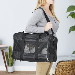 Large Dog Carrier for Air Travel