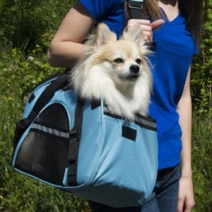Useful Travel Carrier for Small Dogs