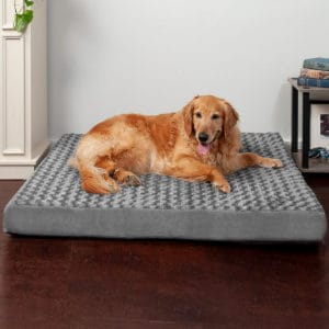 Large Dog's Beds with Machine Washable Cover
