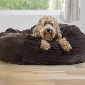 Large Dog Bed With Non Slip Memory Foam