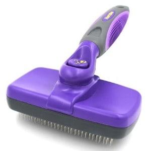 Best Brush for Shor Hair Dog s Coat