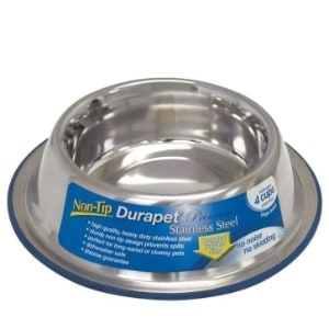 Good to Have Two Stainless Steel Dog Bowls