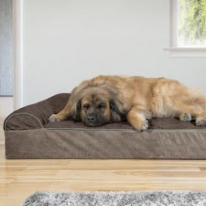 Memory Foam bed that's non slip for Large Dogs