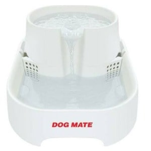 A Filtration System can Help give dog Access to Clean Water