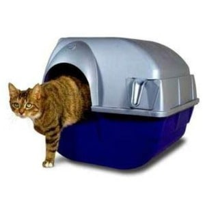 Top Entry Litter Box Items