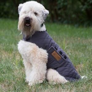 Reflective Trim on Dog Winter Coat