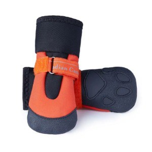 Rubber Boots For Your Pet Pooch