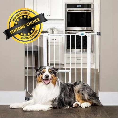 Dog Gate for Home Features