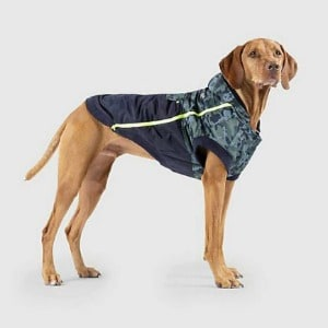 Cold Weather Jacket for Puppies