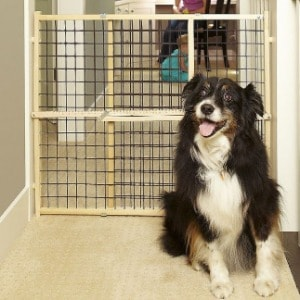 Extra Tall Dog Gate with Door for Home