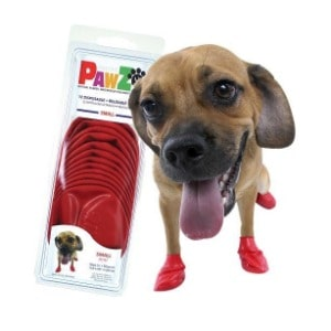 Booties to Keep Your Dog's Pet Clean